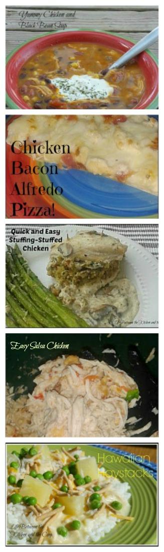 salsa chicken, chicken bacon alfredo pizza, stuffing-stuffed chicken with mushroom sauce, chicken and black bean soup, hawaiian haystacks