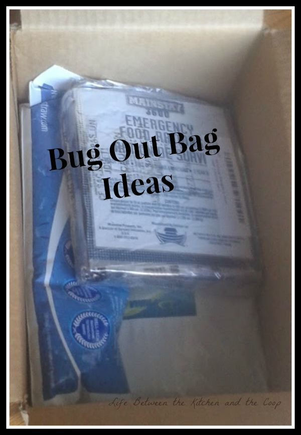Bug Out Bag, prepping, emergency preparedness, 72 hour kit