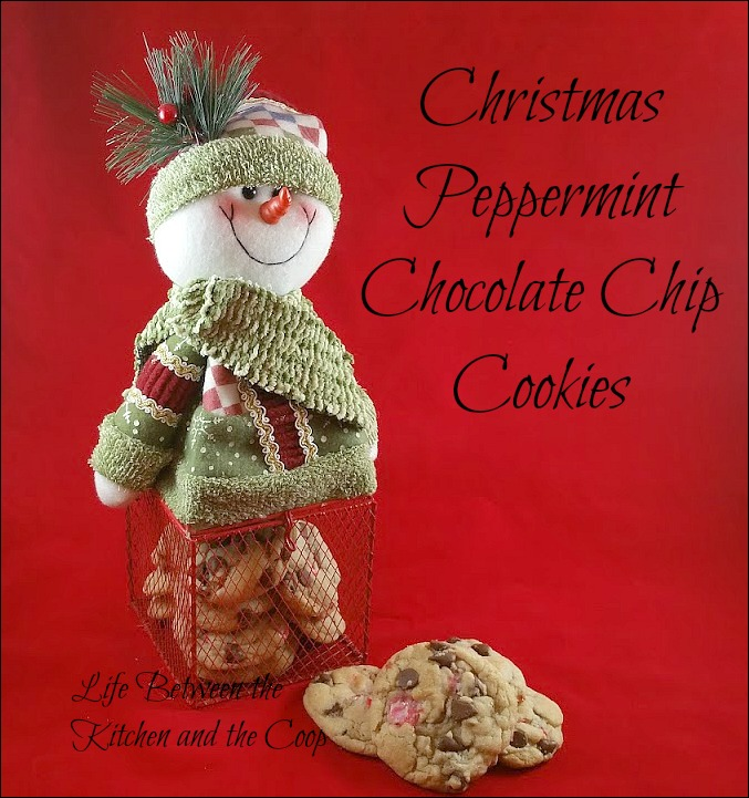 Christmas peppermint chocolate chip cookies