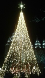 Christmas Tree and Salt Lake Temple WM