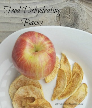 food dehydrating basics