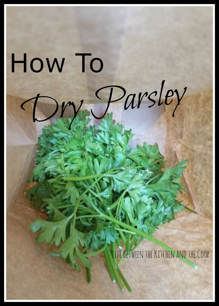 preserving herbs, preserve herbs, dry herbs, drying herbs, parsley