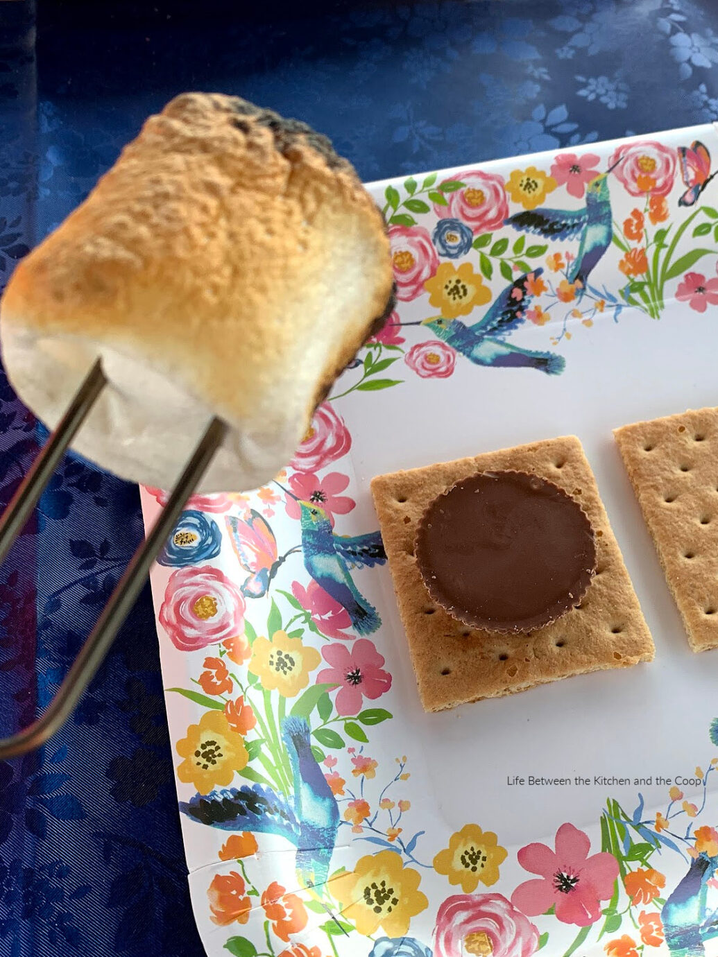 peanut butter cup s'mores recipe