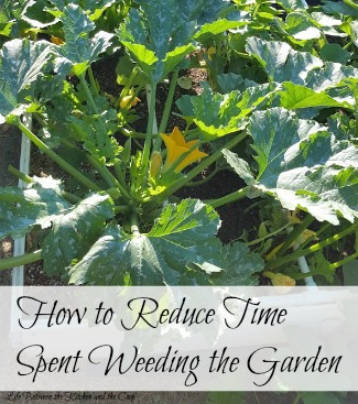 reduce time weeding garden