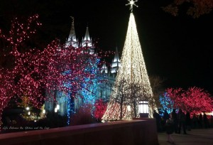 Salt Lake Temple at Christmas wm
