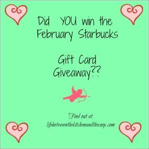 Gift Card, Giveaway, Free, Freebie