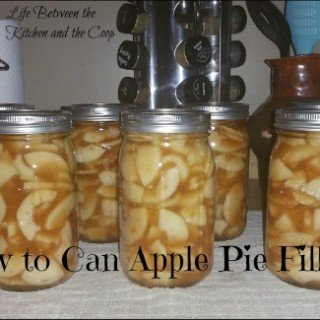 How to Can Apple Pie Filling