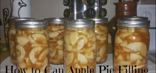 pies, baking, canning, food storage