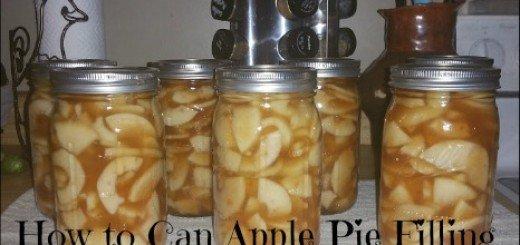 pies, baking, canning, food storage