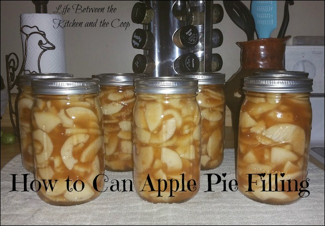 how to can apple pie filling, mrs. wages, pies, canning, food storage, baking