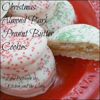 These no-bake Christmas Almond Bark Peanut Butter and Ritz Christmas Cookies are a simple and easy holiday treat.  Making Christmas cookies doesn't get any easier than this!