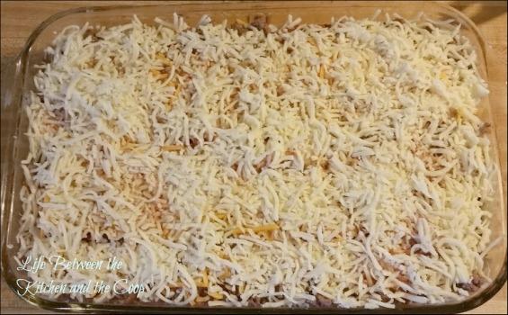 finished lasagna wm