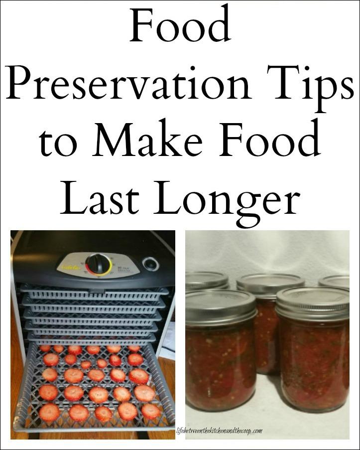 Food preservation tips to make food last longer food preservation sqg forumfinder Choice Image