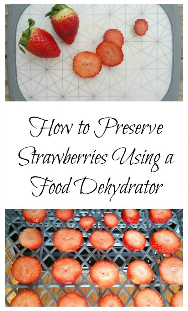dehydrate strawberries