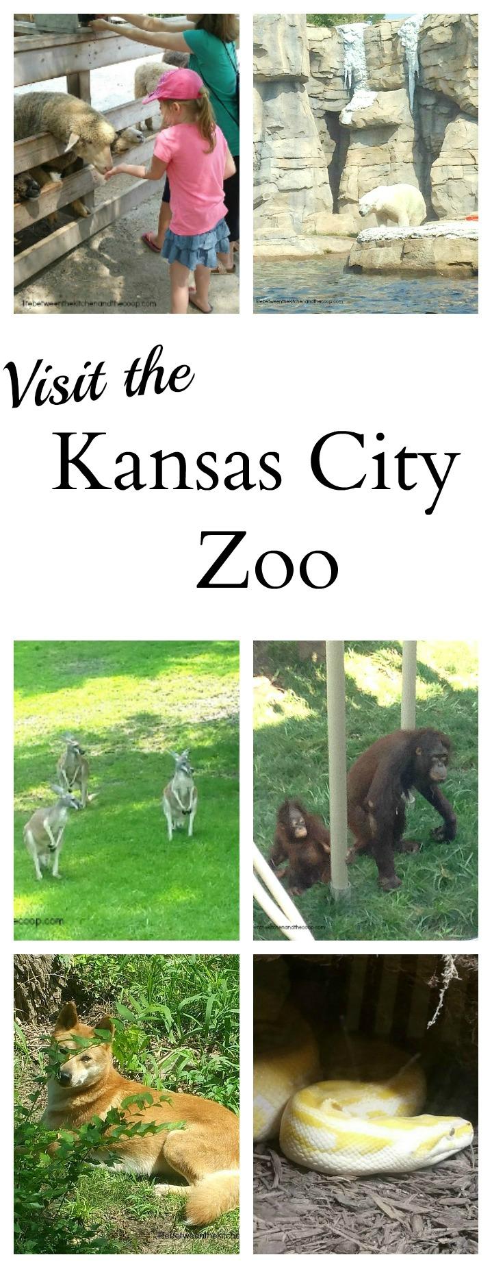 Visit kansas city zoo Garden city zoo