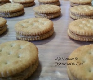 almond bark peanut butter ritz crackers