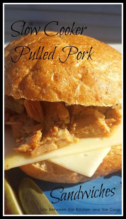 pulled pork (barbacoa), sandwich, slow cooker