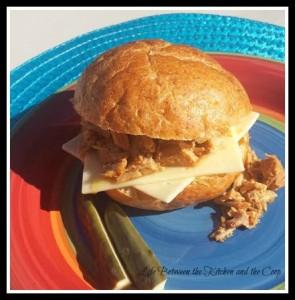 pulled pork, barbacoa, sandwich, slow cooker