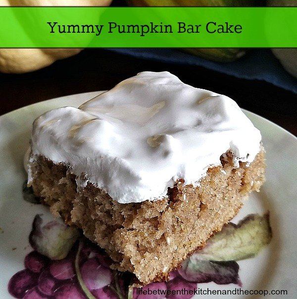 pumpkin bar
