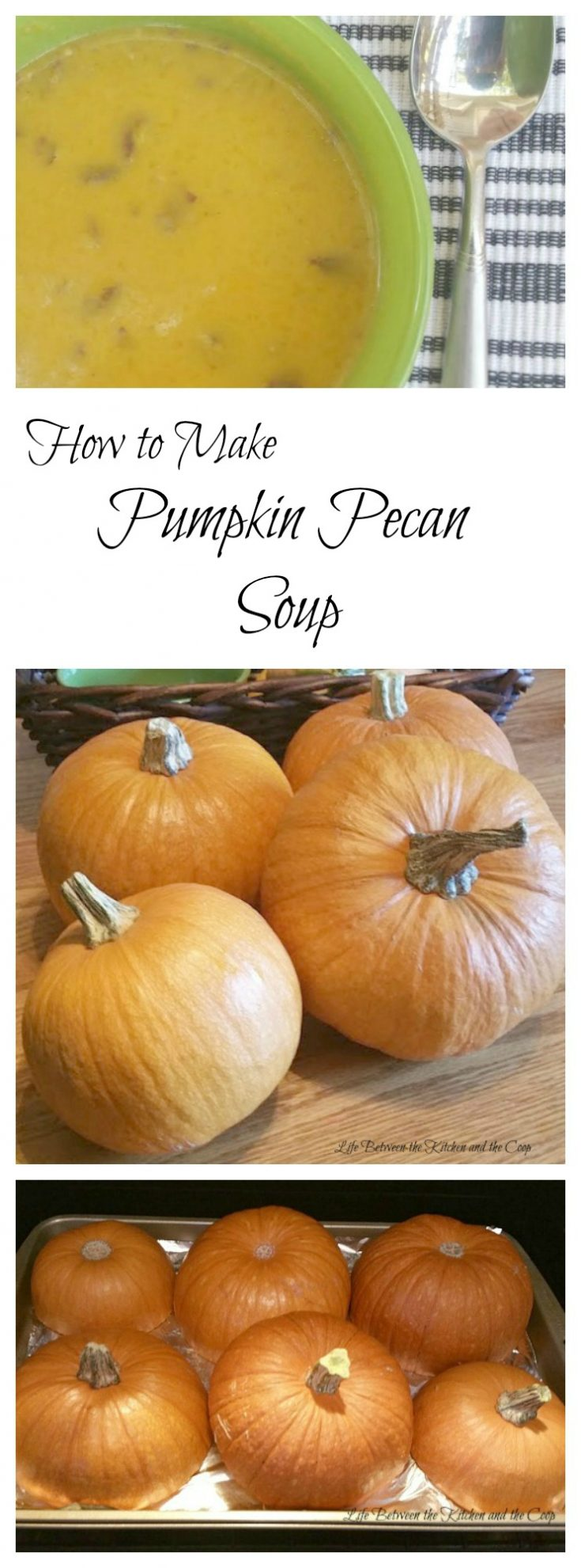 If you are looking for a yummy fall comfort food, you've gotta try my Pumpkin Pecan Soup!  It's warm and creamy with crunchy pecans added.  It is such a tasty, filling soup for those chilly fall nights.  #pumpkin #pecan #pumpkinrecipes  #soup #souprecipes #pecanrecipes #comfortfood #fallrecipes