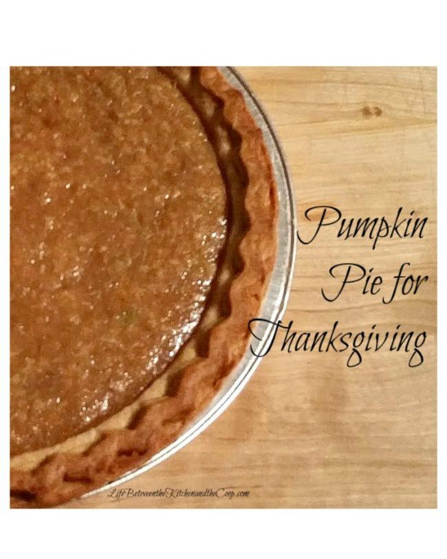 Thanksgiving dessert pie