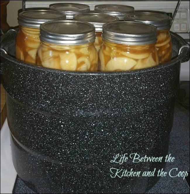 pies, canning, food storage, baking