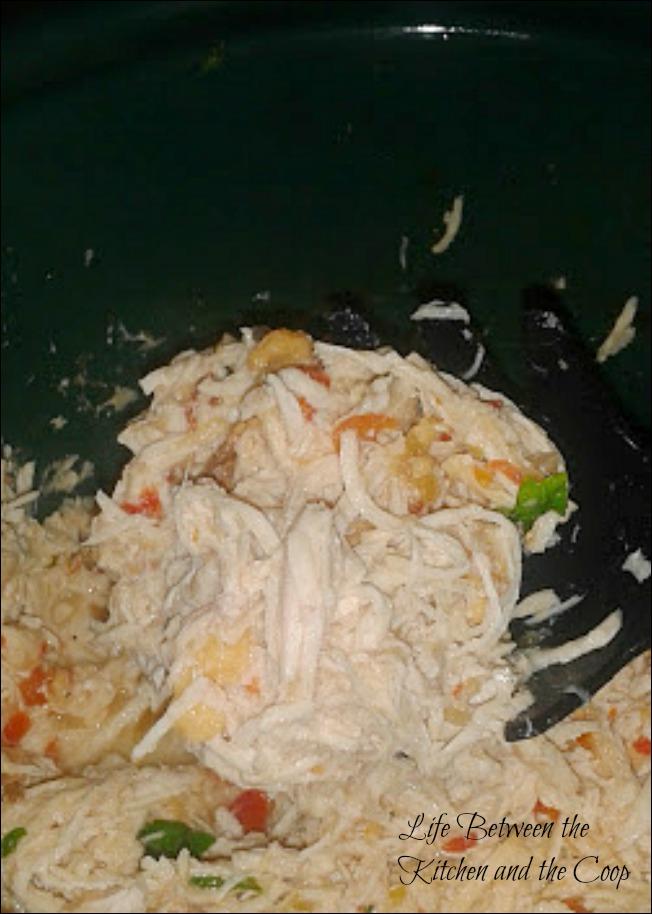 salsa, salsa chicken, Mexican food
