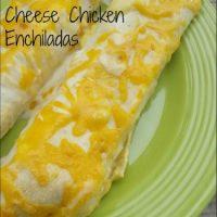 Pepper Jack & Cheddar Cheese Chicken Enchiladas