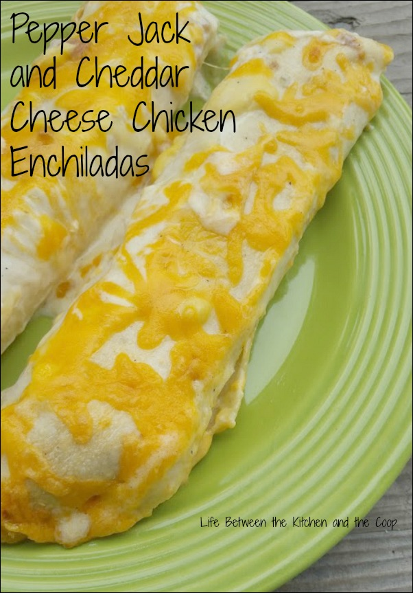 cheesy, tortilla