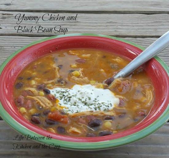yummy chicken black bean soup