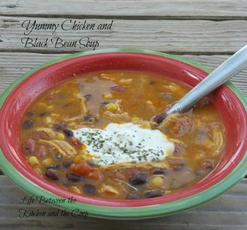 yummy chicken and black bean soup