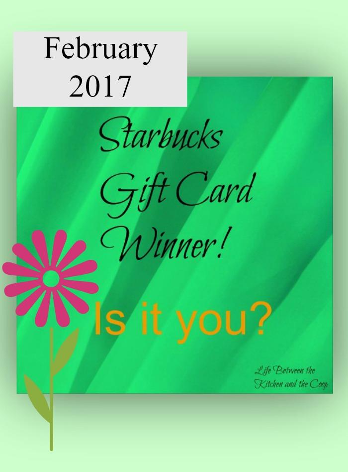 Starbucks Gift Card Winner February 2017