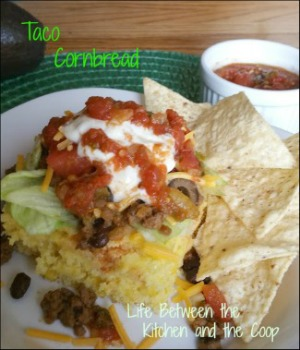 taco, mexican food