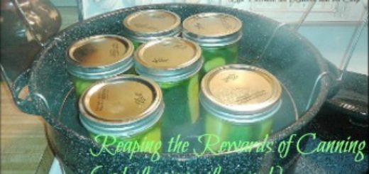 boiling water canning, canning mistakes, how to can, learn to can